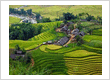 HANOI / SAPA / HALONG BAY (6 DAYS / 5 NIGHTS)