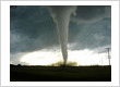 Wind and Tornado Insurance Claims