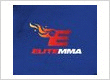Elite Mixed Martial Arts - Atascocita
