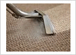 Professional Rug and Carpet Cleaning