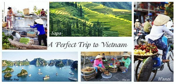 How to take the perfect trip to Vietnam