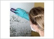 mold testing in Cincinnati.jpg