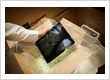 Packaging Contractors_Dublin