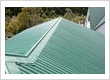 roof moss treatment Auckland