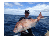 Sandspit Fishing Charters