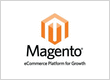 Why to choose a Magento Website Development Company of India???