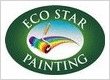 Eco Star Painting