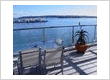 Auckland Waterfront Serviced Apartments (AWSA)