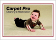 Carpet Pro Cleaning & Restoration