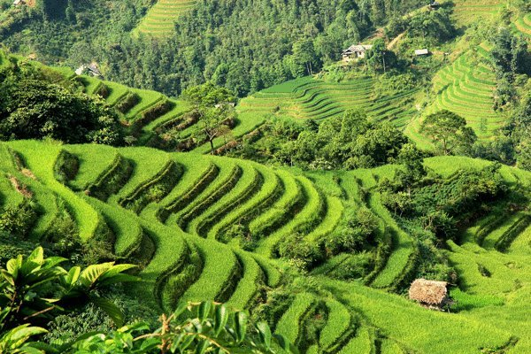 EXPERIENCE OF VIETNAM FAR NORTH'S SPECTACULAR SCENERY