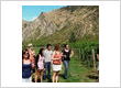 Queenstown Wine Trail Wine Tours