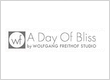 A Day Of Bliss Professional Wedding Photographers