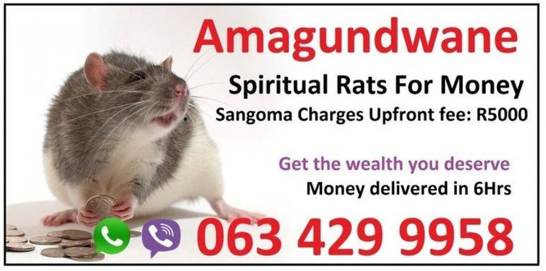 Spiritual rats or amagundwane are the one i use for a powerful money spells in usa uk canada sydney +27634299958 I have been in South Africa for a long time and other countries and I have realized how much the power of money spells in USA is needed, Spiritual R A T S are my ancestors and I use the SPIRITUAL R A T S  to get money to my people, I am a water Inyanga, so I went through water. A powerful sangoma with spiritual traditional powerful herbals combined with amagundwane which deliver the money to you in 1 day or less than 6 hours and the money is valid plus you even put it in the bank.  My money spells in New York , money spells in Germiston,money spells in Namibia,money spells in uk, money spells in usa,money spells in sweden, money spells in netherlands,money spells in canada, money spells in australia,iceland,money spells in ireland, money spells in oman, money spells in pakistan, Gaborone,port elizabeth,north west,Johannesburg,Mafikeng, money spells in Polokwane, money spells in sandton, East London, money spells in Nelspruit, money spells in soweto, money spells in Lesotho, money spells in Swaziland,Botswana has got no side effects and it's guaranteed, upfront fee is R5000 then you state any amount of money you want the SPIRITUAL R A T S to deliver to you. Make an appointment with him today on a WhatsApp or call 0634299958 Baba Messe solidifies his commitment by establishing a one-year unlimited guarantee for every service that offered to his clients - a guarantee that he always honors till today. spiritualratsandmoneyspell@gmail.com https://www.spiritualrats.com/ https://www.instagram.com/babamesse/ https://remote.com/babamesse https://www.youtube.com/watch?v=2_cnbcIp_u4 https://www.youtube.com/watch?v=3kfDMKwevro https://www.youtube.com/watch?v=BuvsNSQXQWA https://www.youtube.com/watch?v=NGQAM-sGiDo https://twitter.com/amagudwane https://za.pinterest.com/babamesse/