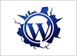WordPress - Best Choice in Open Source Technologies for Website Development