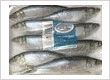 Herring on vacuum sealed trays - Very nice product!