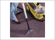 Carpet Cleaning Carnegie