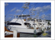 Distinctive Yacht Management, Inc.